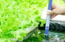 pH Sensoren: Für garantiert anspruchsvolle PH Messungen. (Foto: shutterstock - artstore)