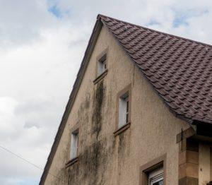 In schattigen Bereichen mit fehlendem Dachüberstand und <strong>häufigem Niederschlag</strong> fühlen sich die Mikroorganismen dann besonders wohl. <strong>Unschöne Verfärbungen</strong> finden sich nicht nur unter den Fensterbänken. ( Foto: Shutterstock-  Dietrich Leppert )